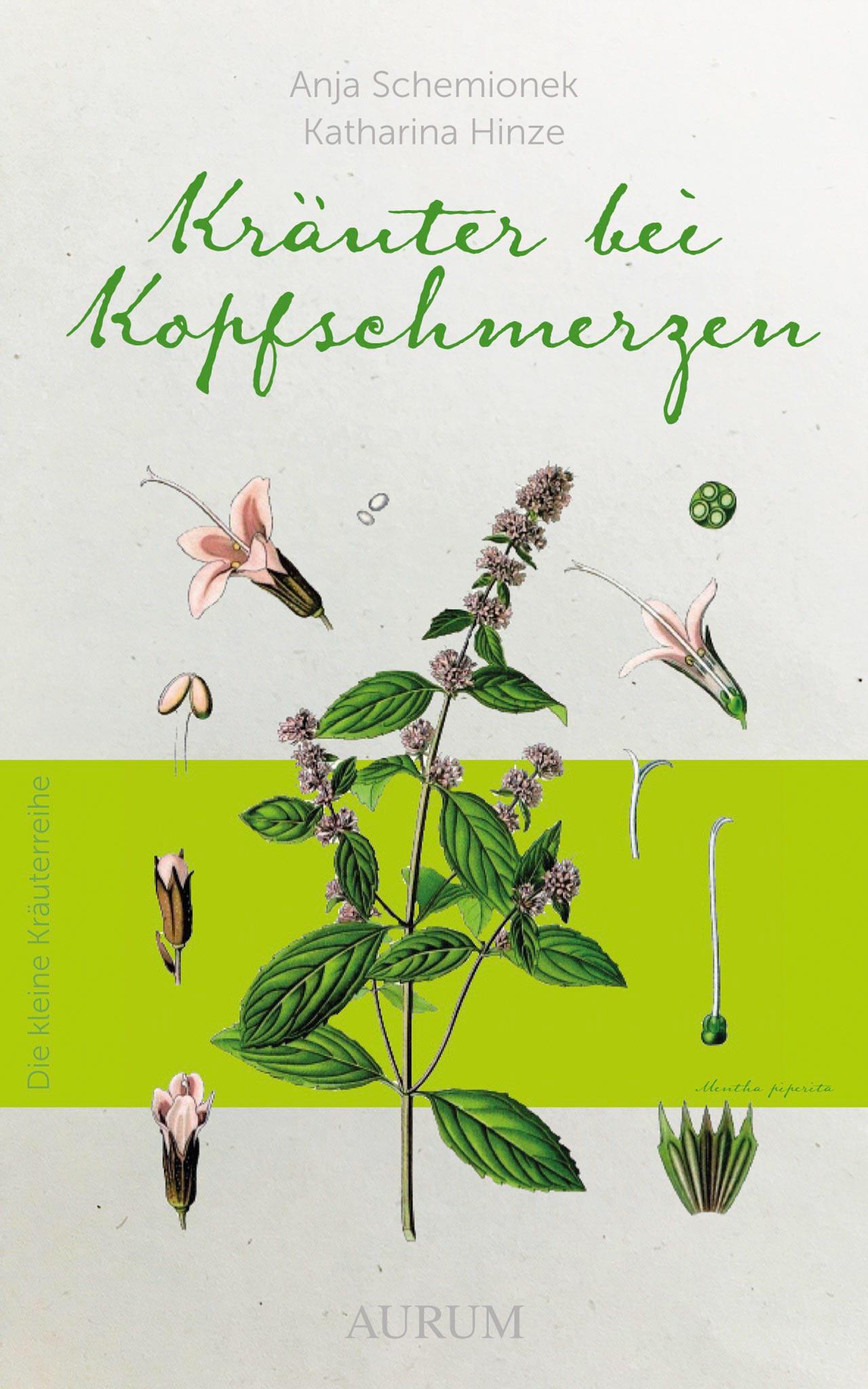 Cover: Kräuter bei Kopfschmerzen (Dr. Anja Schemionek & Katharina Hinze)
